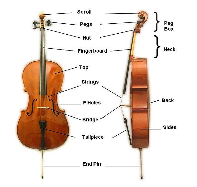Cello_parts